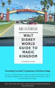Disney Magic Kingdom Guide For First Time Visitors.